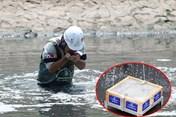 Chuyên gia Nhật lắp thiết bị biến bùn thành khí CO2 và nước ở sông Tô Lịch