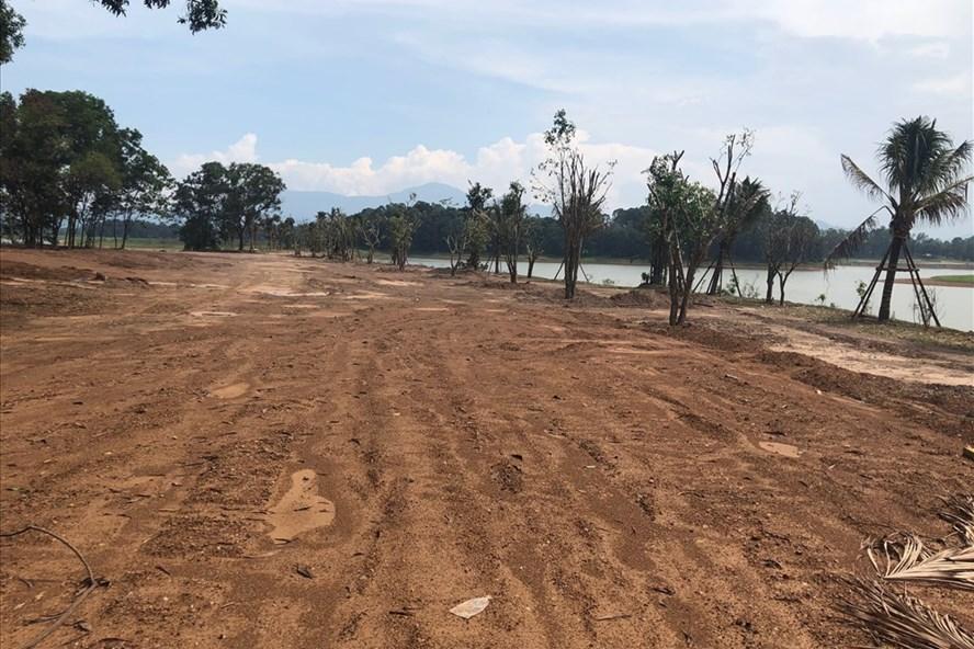 Bên trong dự án Resort Spa Cây Bồ Đề của Cty CP Thương mại Đồng Mô, cách đây 1 tháng, chủ đầu tư đã tiến hành san lấp trồng cây. Ảnh: TC-CN
