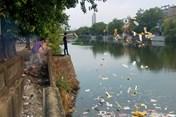 Phạt đến 7 triệu đồng với hành vi xả rác trên vỉa hè