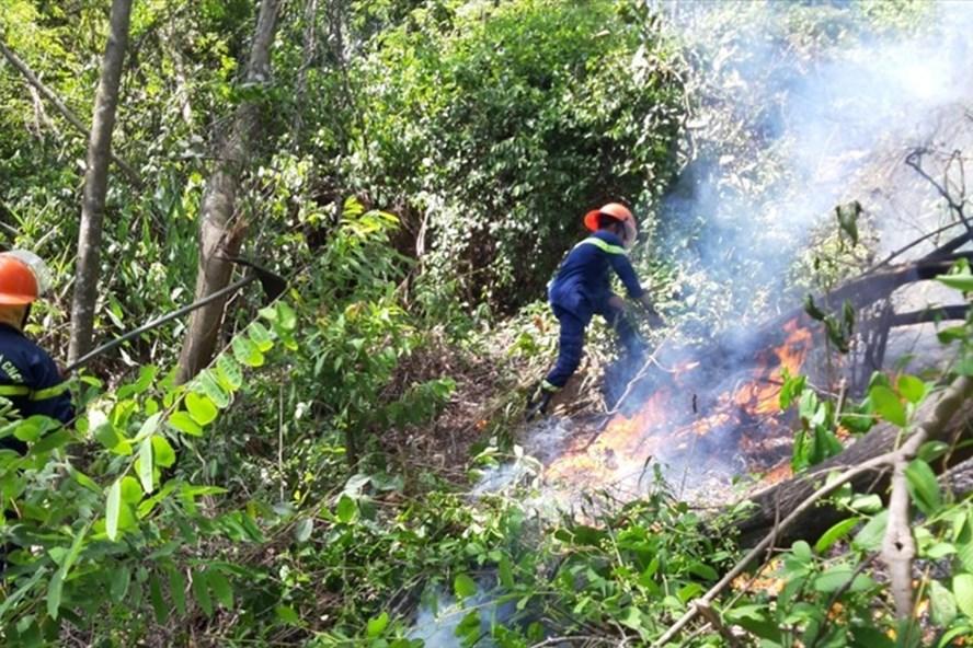 Lực lượng PCCC đang tiến hành dập lửa. ảnh: V.X