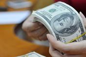 Tỷ giá ngoại tệ 29.6: Tăng giá bất thành, USD chợ đen lùi sâu