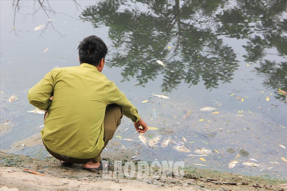 """Ông Trần Văn Tiến (54 tuổi, sống tại đường Nguyễn Đình Hoàn, quận Cầu Giấy, Hà Nội) cho biết: """"Hiện tượng cá chết xuất hiện từ đêm hôm qua, bốc mùi hôi thối. Người dân sinh sống tại đây cảm thấy vô cùng khó chịu trước tình trạnh này."""""""