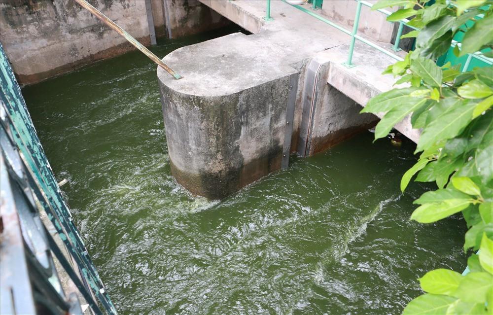 Việc xả nước từ hồ Tây vào sông Tô Lịch được tiến hành từ sáng ngày 9.7.