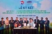 HLV Park Hang-seo xuất hiện trong lễ ký kết tài trợ cho đội tuyển Việt Nam