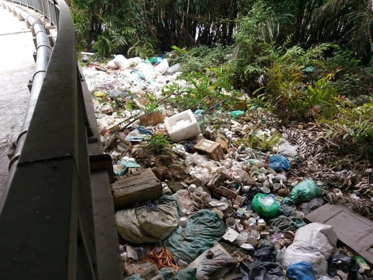 Đoạn gầm cầu Phú Mỹ thành nơi vứt rác.  Ảnh: M.Q