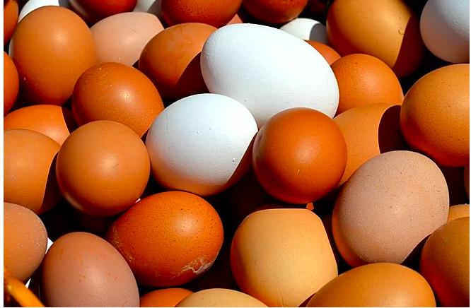 Trứng gà nhiều protein, kẽm, vitamin nhưng ít calo và cholesterol. Ảnh: Health.