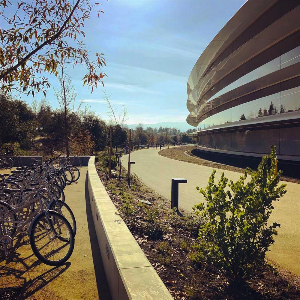 Khoảng 1.000 xe đạp được bố trí trong khuôn viên khu nhà để các nhân viên di chuyển. Đường dành cho xe đạp và chạy bộ cũng được xây dựng để khu vực trông giống một công viên. (Ảnh: Dezeen).