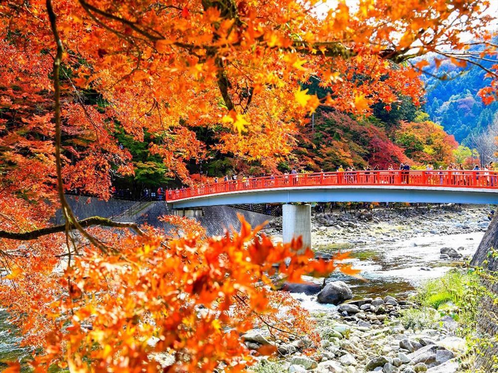 Cảnh thu tại hồ Kawaguchiko.