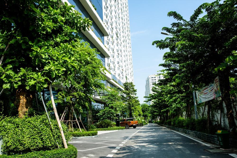 Tập đoàn Capital House trồng 5475 cây xanh nhân dịp kỷ niệm 15 năm thành lập.