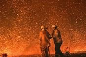 Hình ảnh người Việt đang sống gần khu vực cháy rừng ở Australia