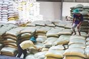 Xuất cấp 4.000 tấn gạo hỗ trợ cứu đói cho 4 tỉnh miền Trung