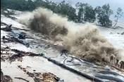 Đê biển Tây sạt lở nghiêm trọng, Cà Mau ban bố tình trạng khẩn cấp