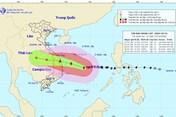 Tin bão mới nhất: Bão số 9 Molave di chuyển rất nhanh, cách Đà Nẵng 550km