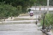 Mưa bão liên tiếp, Bình Định thiệt hại hơn 1.000 tỉ đồng
