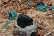 Thanh tra chuyên đề các cơ sở xử lý chất thải nguy hại trên toàn quốc