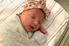 Em bé Mỹ được sinh ra từ phôi thai đông lạnh 27 năm trước