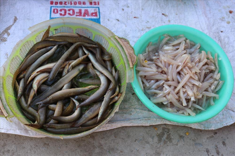 Không chỉ đa dạng những loại cá sông hay mớ cá đồng tươi rói mà khu chợ còn phục vụ các món chế biến sẵn như hến ruột đã được bóc vỏ.