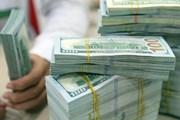 Tỷ giá ngoại tệ 1.3: USD lao dốc, COVID-19 ám ảnh tâm trí nhà đầu tư