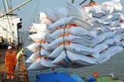 Doanh nghiệp muốn giải toả nhanh lượng gạo đang nằm tại cảng