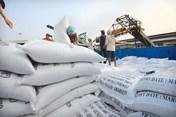 Vụ lùm xùm xuất khẩu gạo: Tờ khai của 22 doanh nghiệp không có giá trị