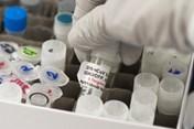 Vaccine ngừa COVID-19 có thể có vào đầu năm sau