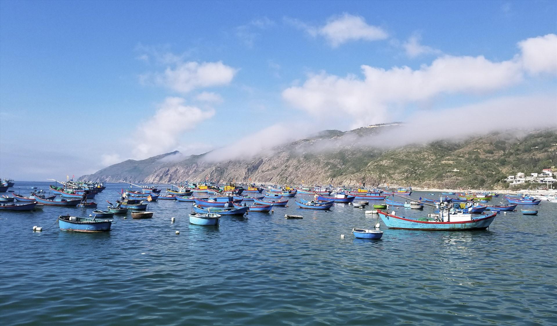 Các công ty du lịch sẽ tạo ra nhiều sản phẩm mới mang bản sắc đặc trưng của vùng đất Bình Định.