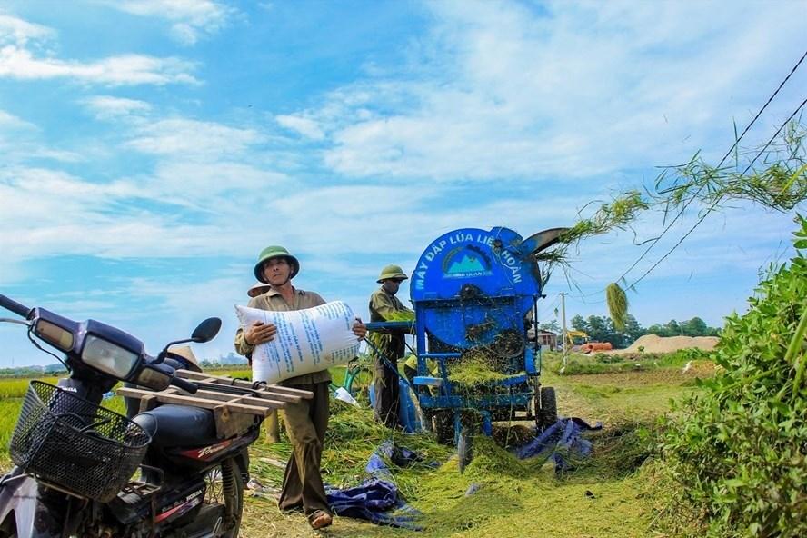 Chính sách miễn thuế sử dụng đất nông nghiệp mang lại nhiều ý nghĩa với người dân nông thôn. Ảnh: Trần Vương