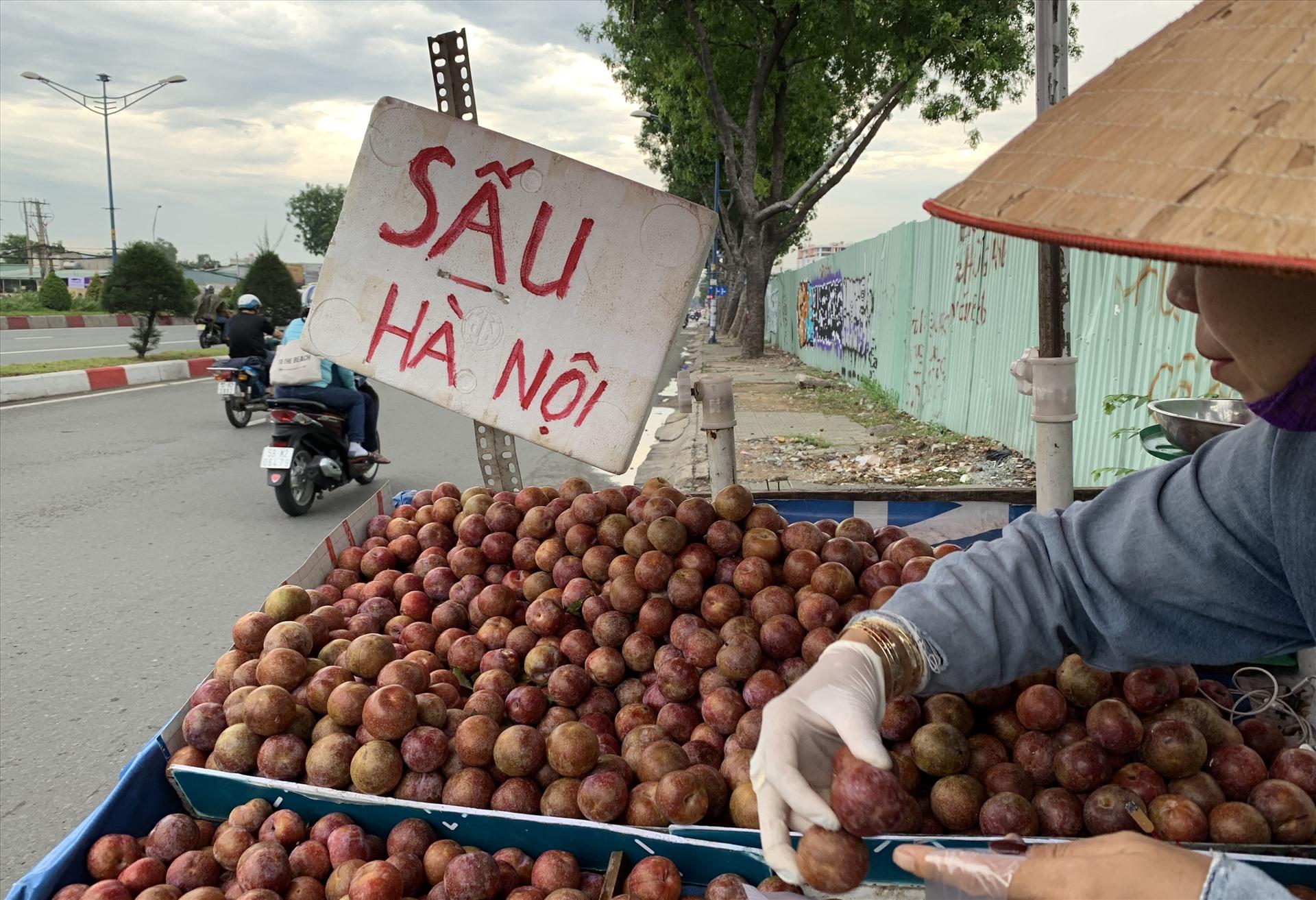 Mận và sấu mang thương hiệu Hà Nội được bày bán trên đường Trường Chinh (quận Tân Bình) có mức giá từ 40-60.000 đồng/kg.