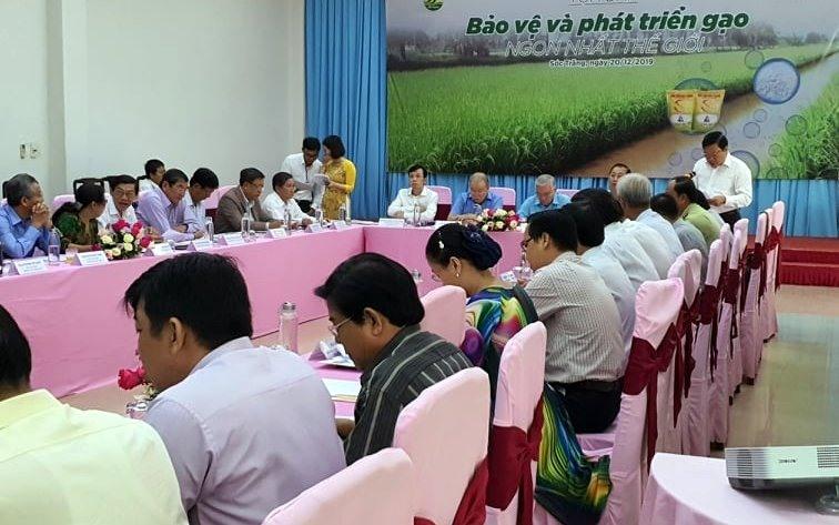 Dự án ngoài sản xuất còn phục dựng quá trình lai tạ giống làm nên gạo ngon nhất thế giới (ảnh Nhật Hồ)
