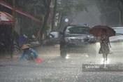 """Còn mấy cơn bão """"đe doạ"""" nước ta trong năm nay sau bão số 4 Higos?"""