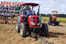 Việt Nam xuất khẩu lô gạo thơm đầu tiên sang EU  theo EVFTA
