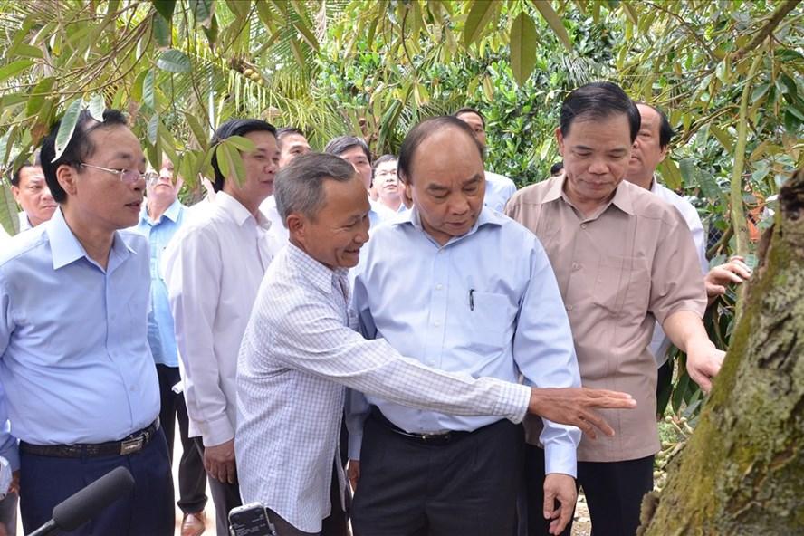 Thủ tướng Nguyễn Xuân Phúc thăm vùng trồng sầu riêng tỉnh Tiền Giang. Ảnh:K.Q