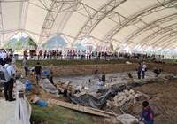 Tiếp tục nghiên cứu về bãi cọc cổ ở Thủy Nguyên, Hải Phòng