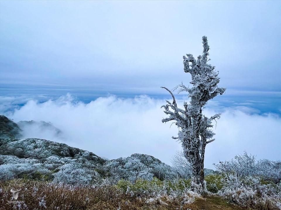 Nhiều du khách đã đến chụp ảnh check-in khi nghe tin có băng giá trên vùng núi.