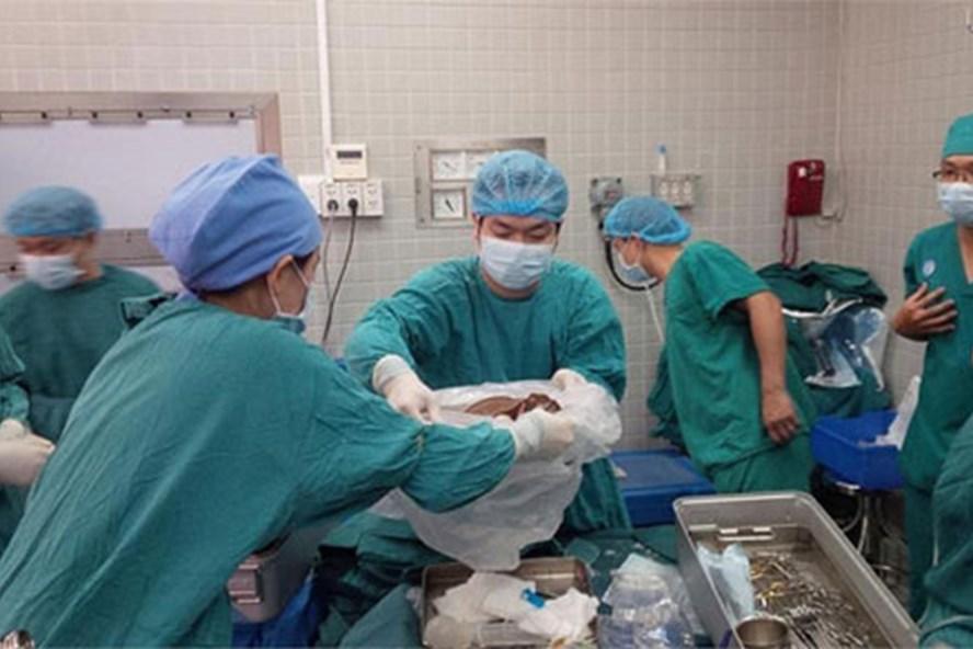 Lấy gan từ bệnh nhân chết não để thực hiện ghép tạng. Ảnh: T.L