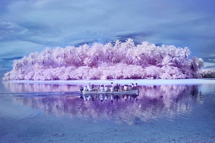 """Đảo Pingelap được mệnh danh là """"Hòn đảo mù màu""""."""