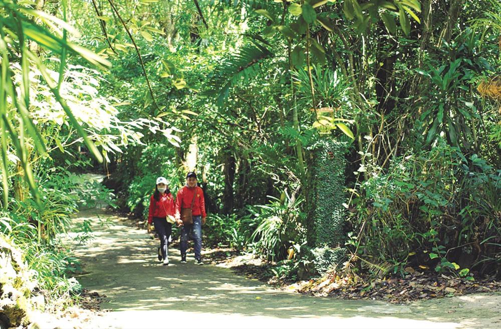 Du khách lang thang trong khu bảo tồn lan rừng lớn nhất Việt Nam.