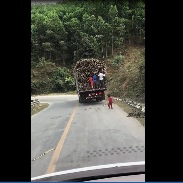 Nhóm trẻ đu bám chiếc xe tải bất chấp nguy hiểm để trộm mía. ảnh:cắt từ clip