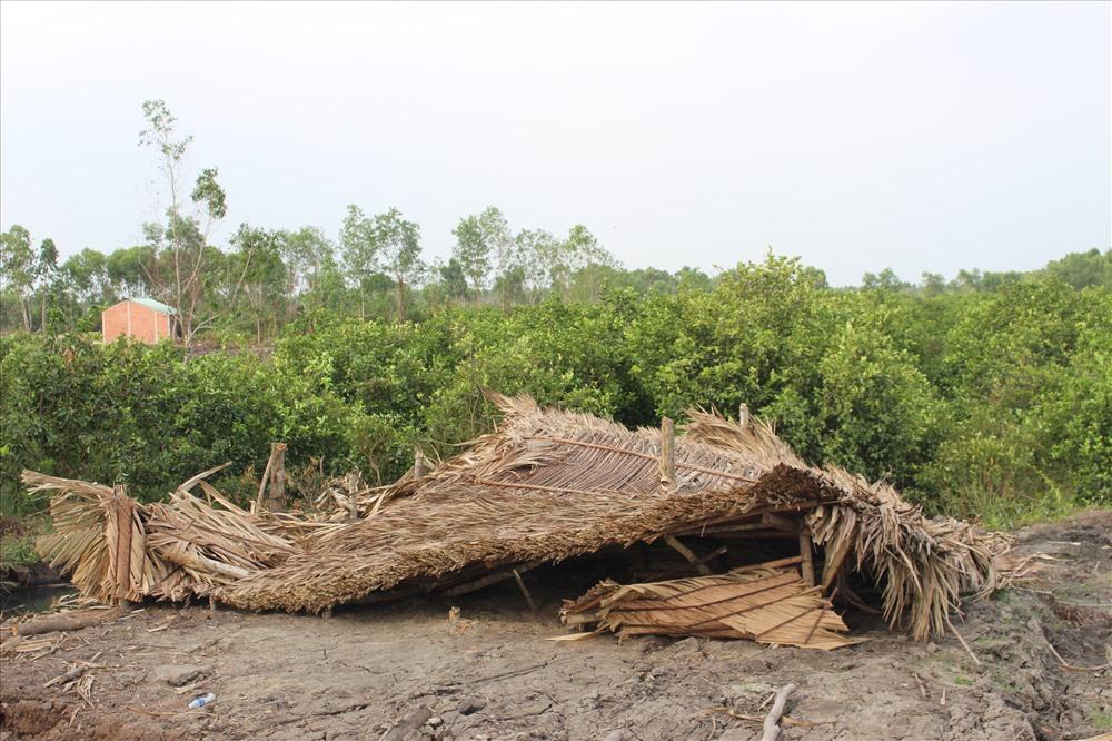 Một căn nhà cất trái phép trên ruộng chanh của người dân bị tháo dỡ.
