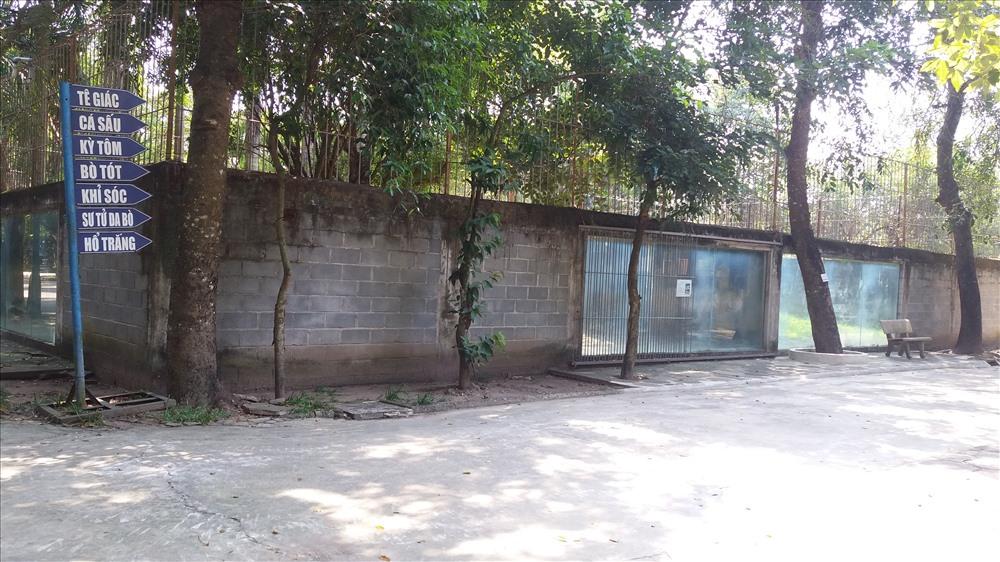 Cận cảnh thú nuôi bị coi là ngược đãi tại vườn thú Công viên nước Củ Chi - Ảnh 21.