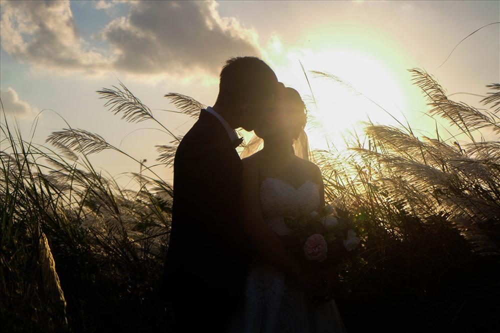 Một đôi uyên ương trẻ đã chọn cánh đồng cỏ lau để chụp ảnh cưới của mình.