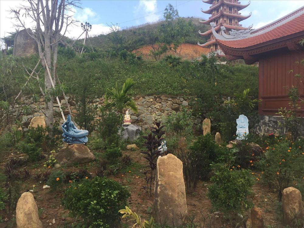 Tọa lạc trên động Thăng Thiên thuộc dãy núi Đại Huệ, xã Nam Anh, huyên Nam Đàn, ở độ cao 450m so với mực nước biển, chùa Đại Tuệ nằm trên khuôn viên khoảng 6.000m2 trong một không gian tĩnh lặng, cảnh vật thơ mộng, hữu tình. Chùa Đại Tuệ còn được xem là ngôi chùa có nhiều tượng phật hồng ngọc nhất Việt Nam. Ảnh: Một góc vườn trong khuôn viên chùa.