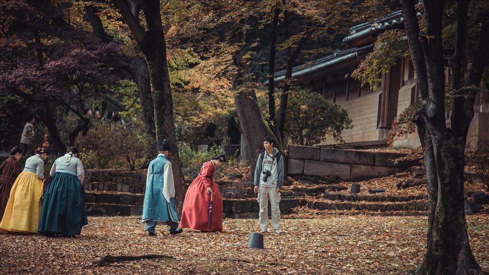 Lá vàng dệt thành những tấm thảm mềm dưới chân du khách. Người Hàn Quốc vẫn thường thư thái tản bộ dưới những tán vàng rợp trời và hít thở không khí trong lành, cái nắng chan hòa và cái lạnh của mùa thu.