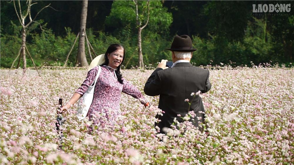 Loài hoa đặc trưng của miền cao nguyên đá địa đầu Tổ quốc Hà Giang bất ngờ bung sắc ở Làng văn hóa các dân tộc Việt Nam đã thu hút hàng nghìn lượt khách đến chụp ảnh.