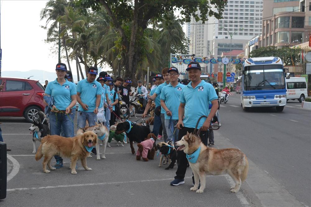 Những chú chó diễu hành trên phố. Ảnh: Châu Tường
