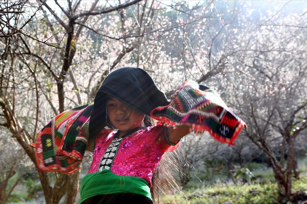 Em bé người Thái trong rừng mơ nở trắng muốt thuộc xã Mường Sang huyện Mộc Châu.