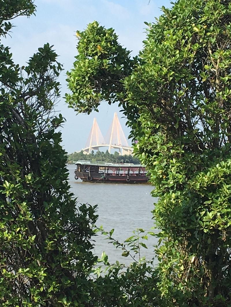 Cây cầu nhìn từ xa. Ảnh: HDN
