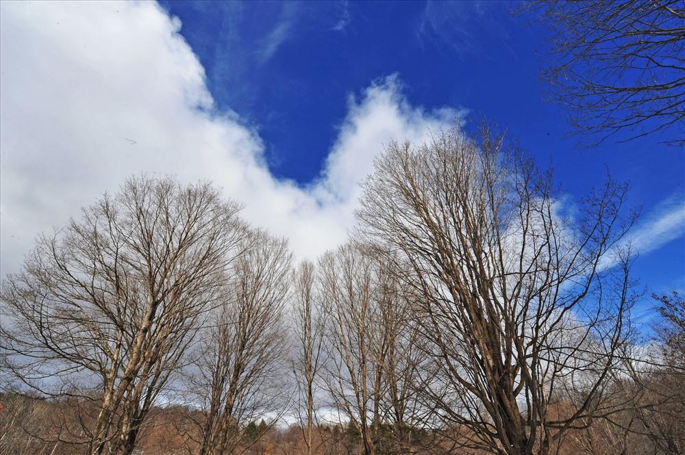Phong cảnh tuyệt đẹp của Vermont, ngày có nắng.