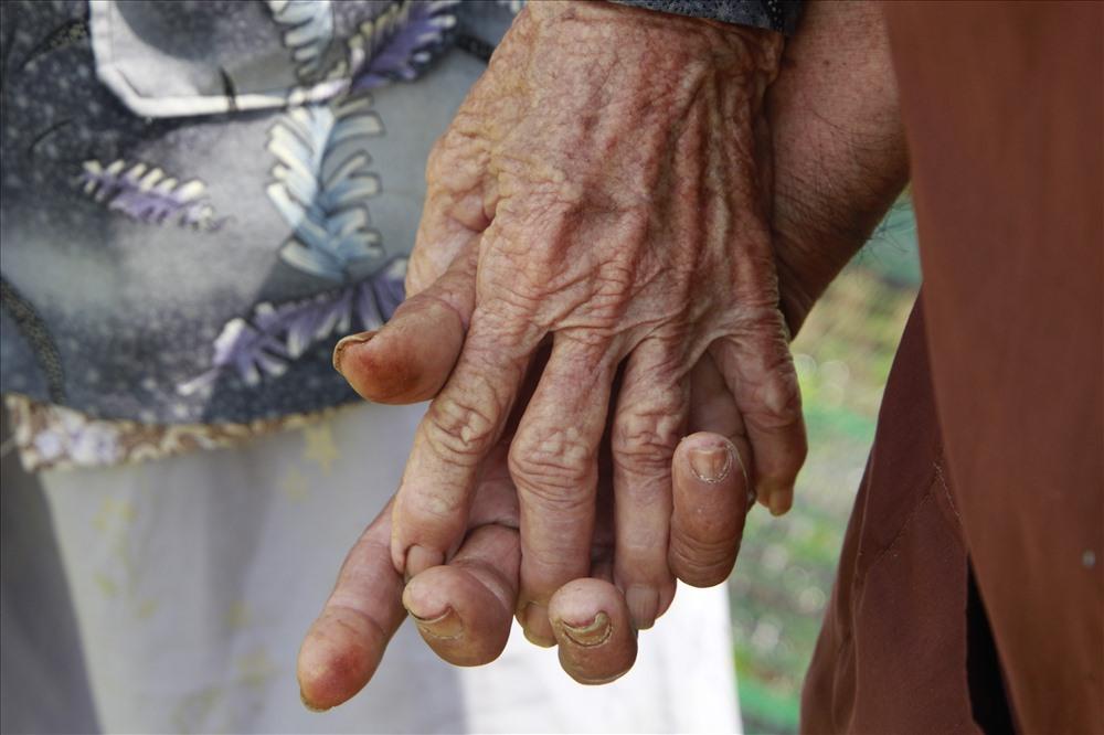 Hàng ngày ông bà vẫn nắm tay nhau đi thăm nom vườn rau mà hai người đã cùng nhau vun xới.