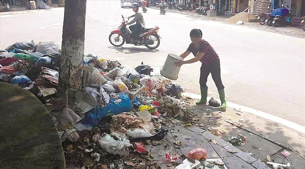UBND TP HCM chỉ đạo 24 quận - huyện phải thực hiện đấu thầu thu gom rác trong năm 2018. Ảnh: H.H